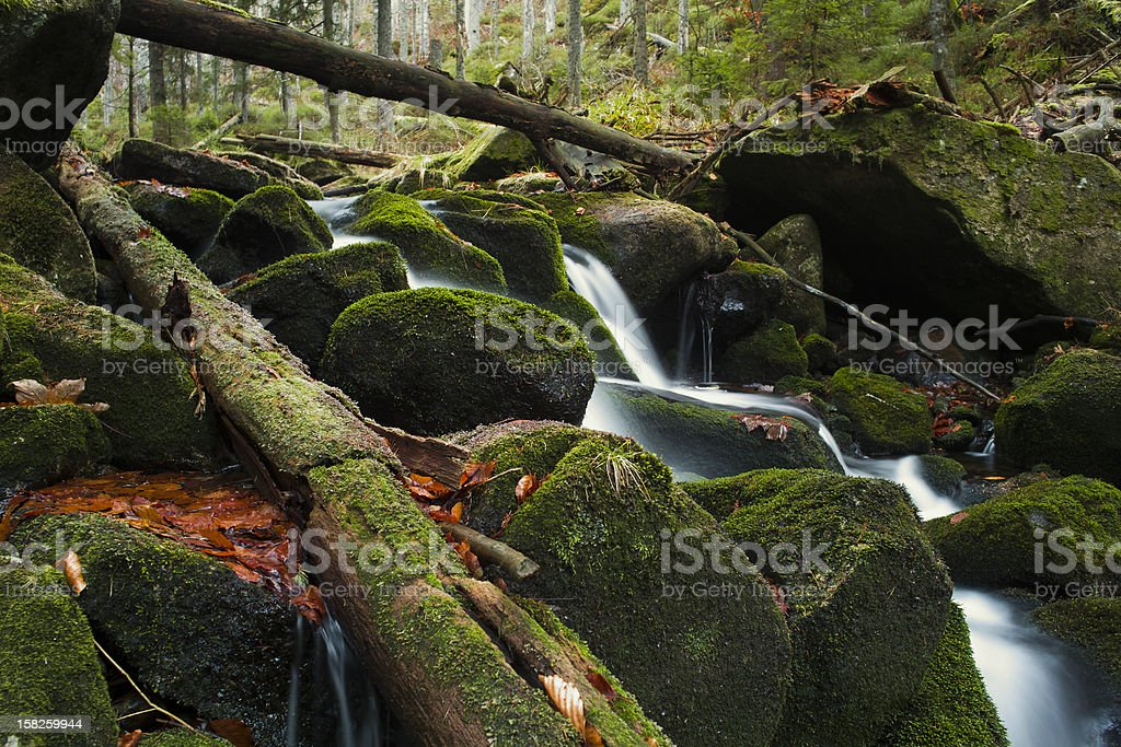 Kleine Ohe, Bavarian Forest stock photo