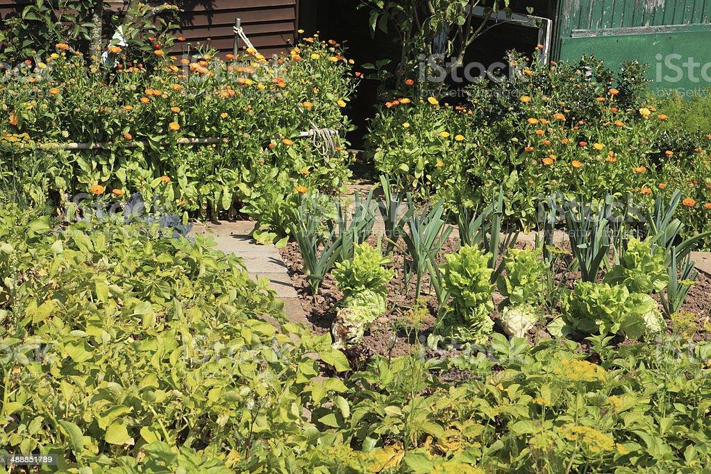 Kleingartenanlage stock photo