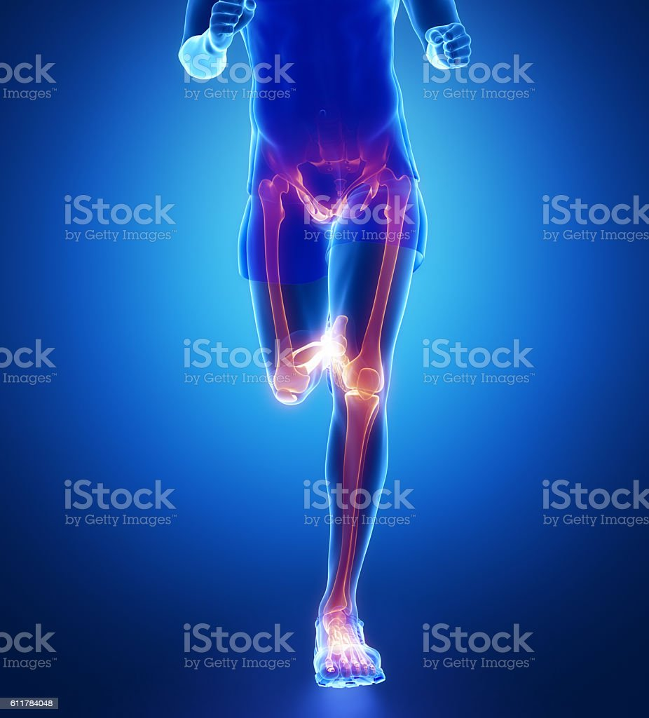 Knee, hip, ankle - running man leg scan in blue stock photo