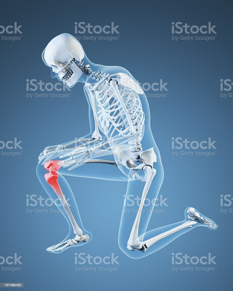 Knee pain Illustration royalty-free stock photo