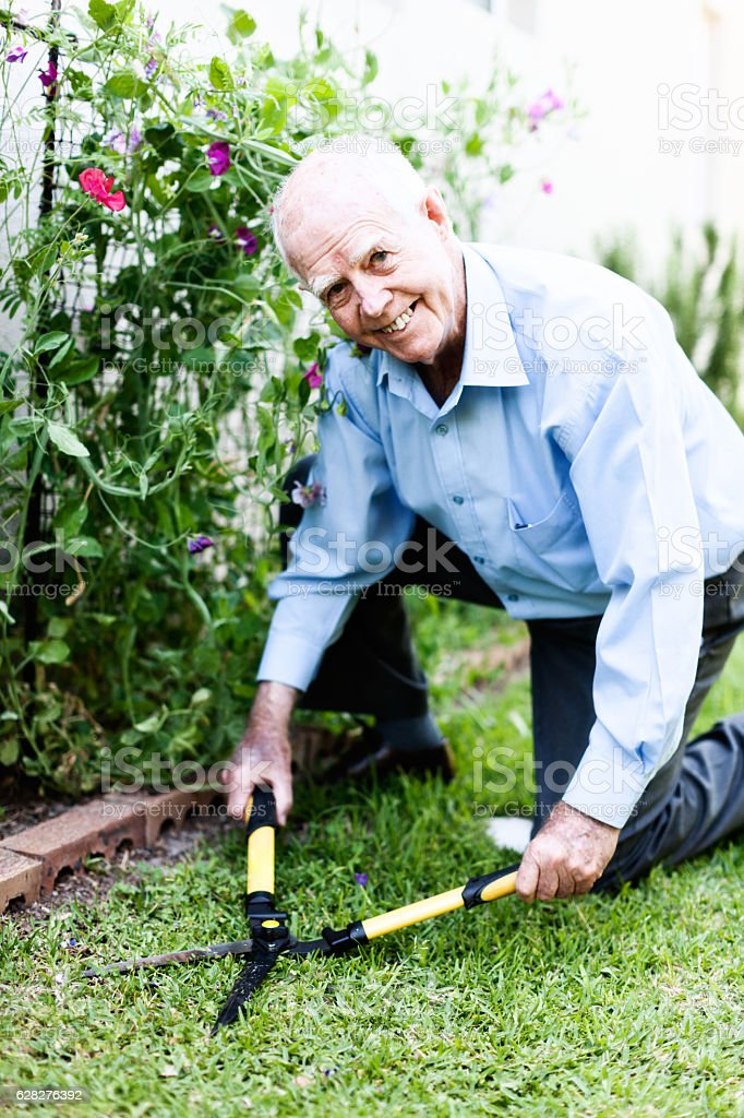 Kneeling 90-year-old man happily clipping his garden lawn stock photo