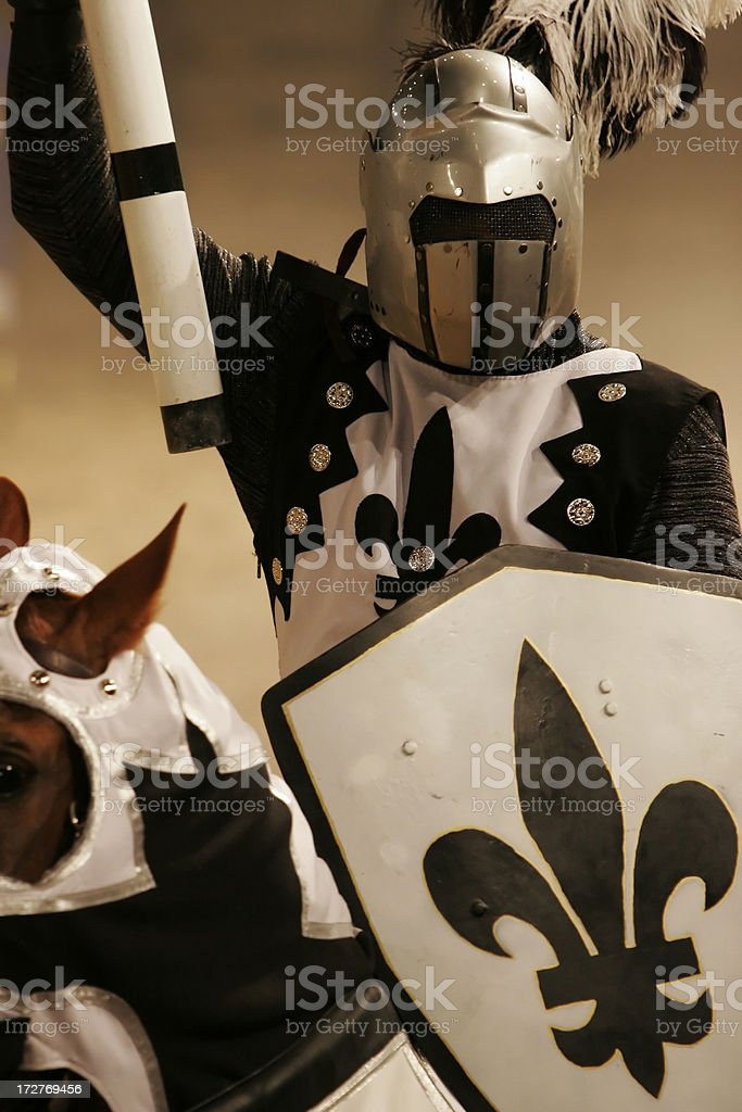 Knight in Shining Armor stock photo