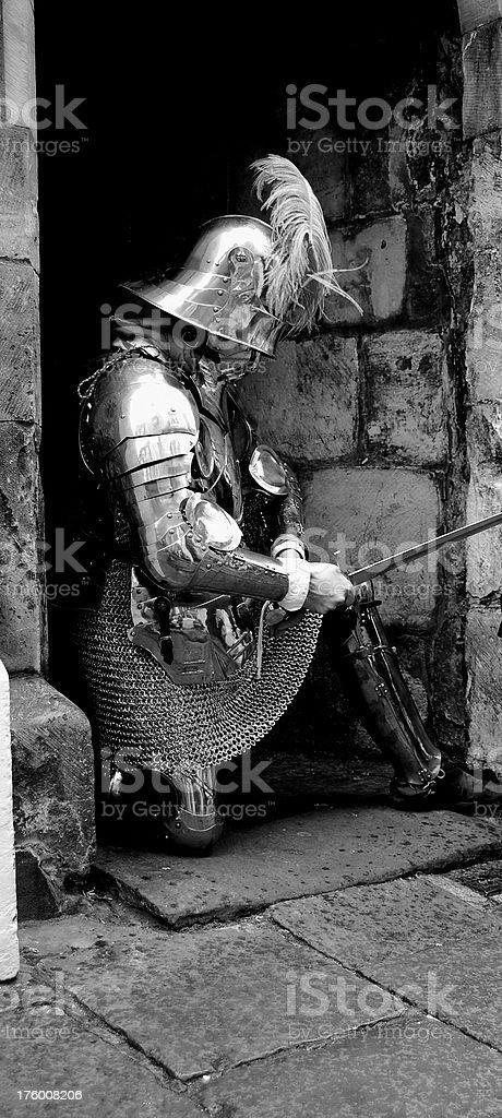 Knight. stock photo