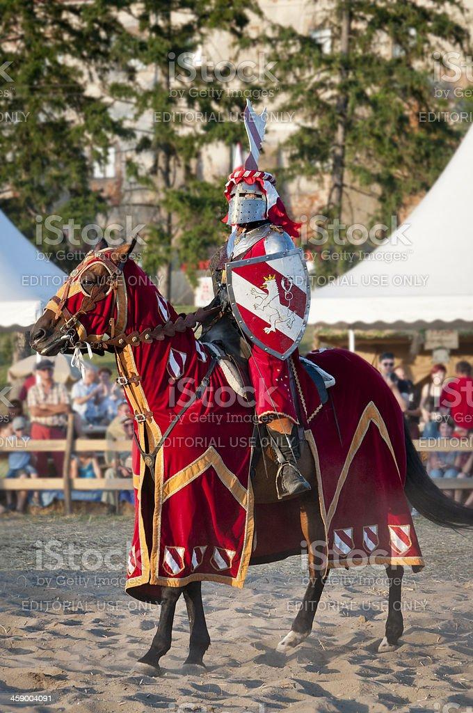 Knight royalty-free stock photo