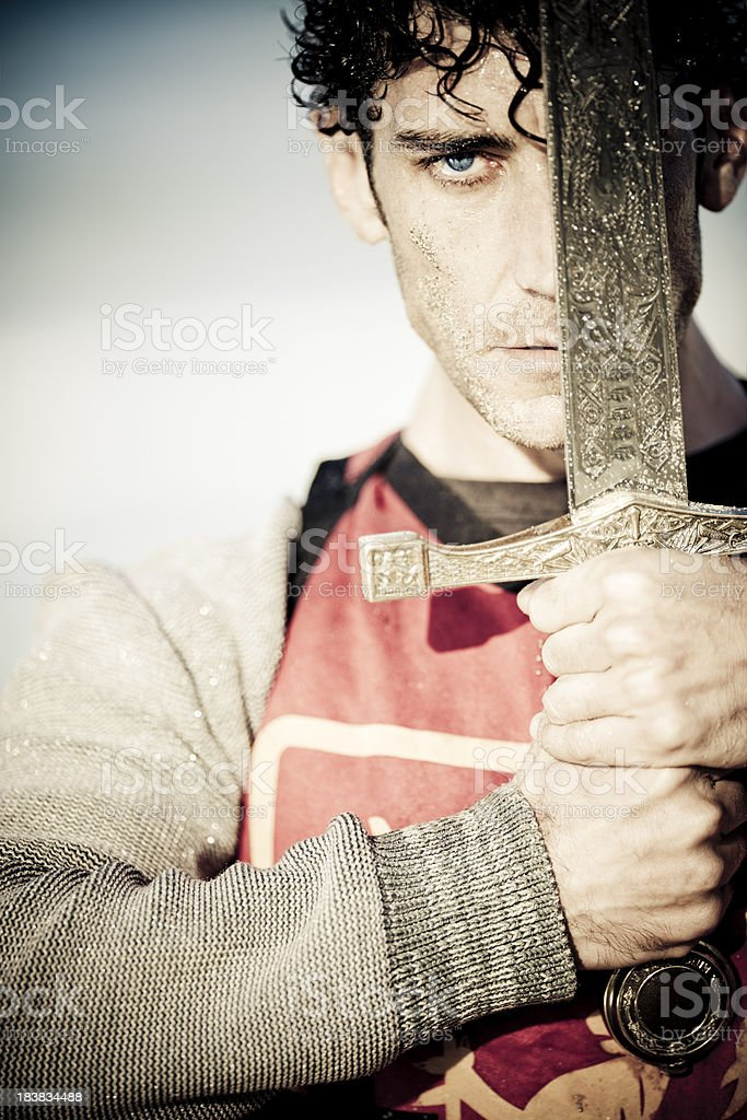 knight portrait royalty-free stock photo