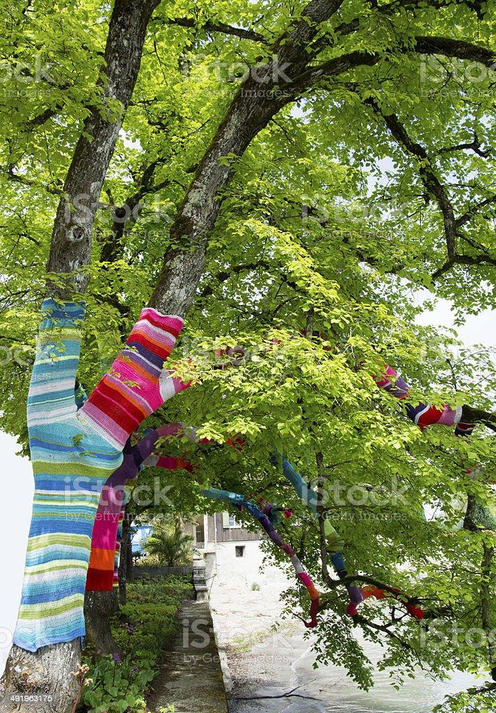 Knit Knot Tree stock photo