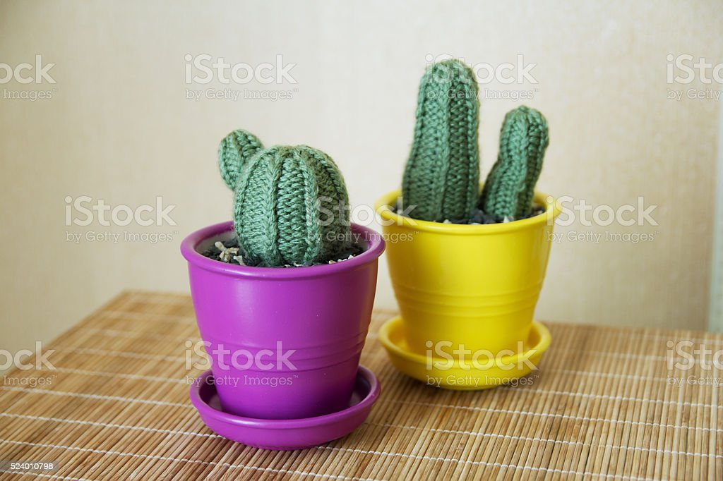 knitted cactus handmade stock photo