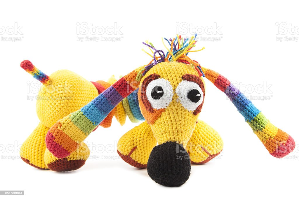 knitted iridescent dog royalty-free stock photo