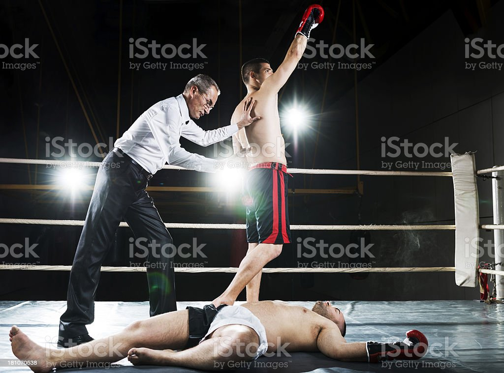 Knockout! royalty-free stock photo