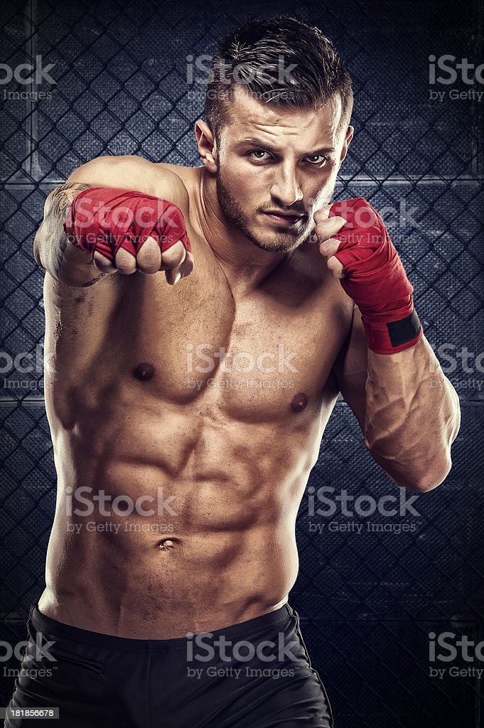 Knockout royalty-free stock photo