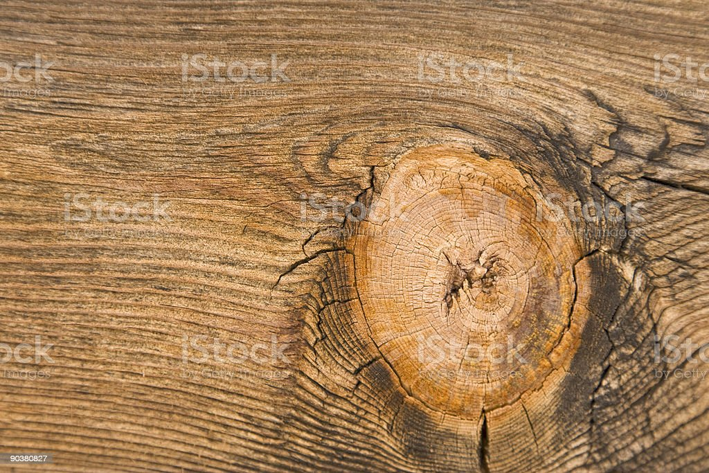 Knothole Detail on Wood, Natural Pattern, Close-up, Copyspace, Warm Tone stock photo