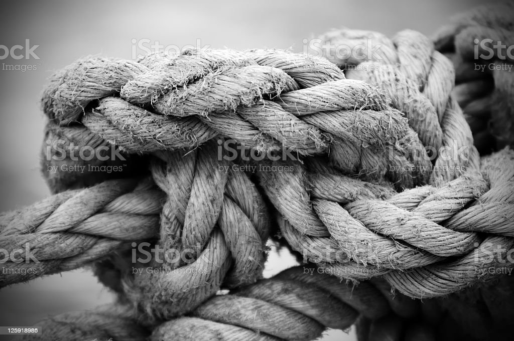 Knotted Ropes stock photo