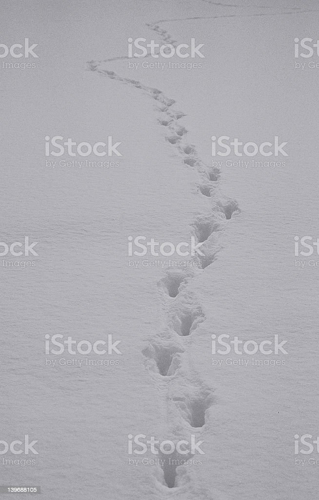 Know where you are going ? royalty-free stock photo