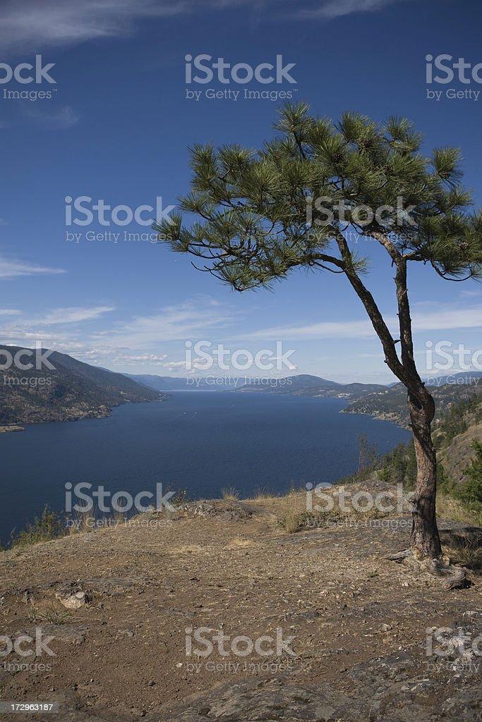 ノックス Mountian の眺め ロイヤリティフリーストックフォト