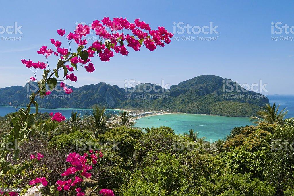 Ko Phi-Phi don, Thailand stock photo