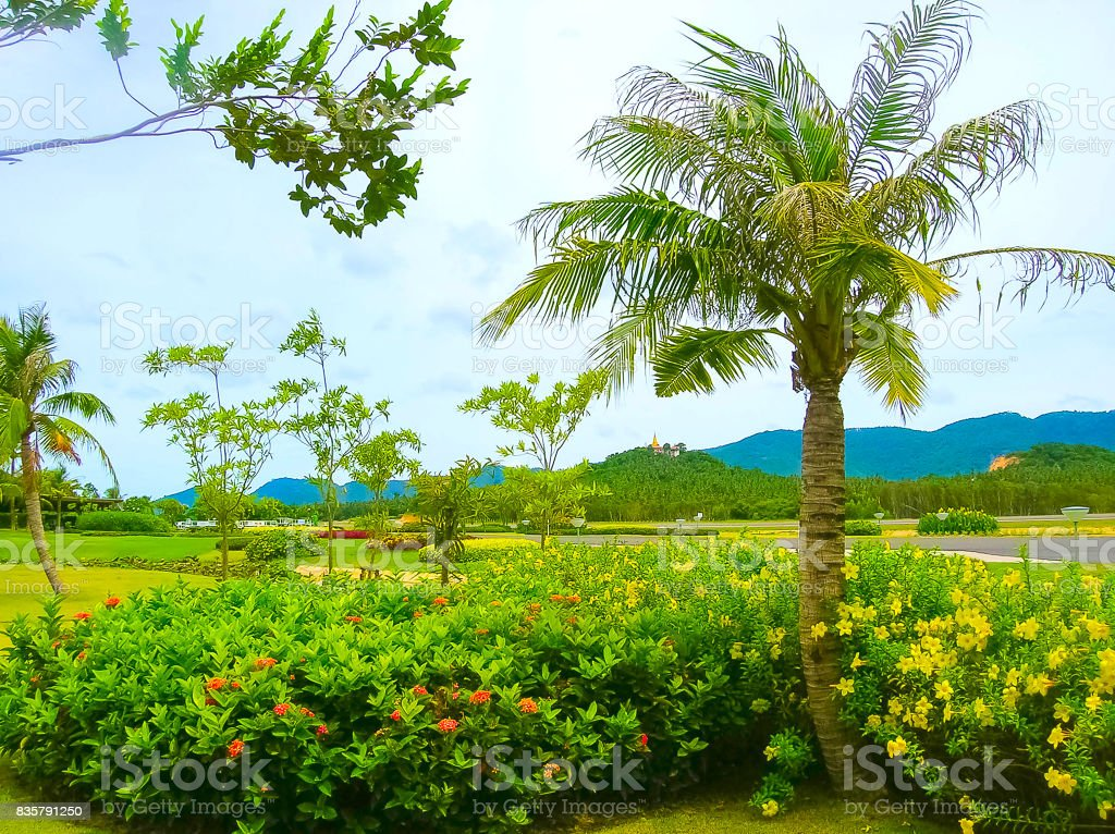 Ko Samui ,Thailand - Runway of Samui Island Domestic Airport in sunny day stock photo