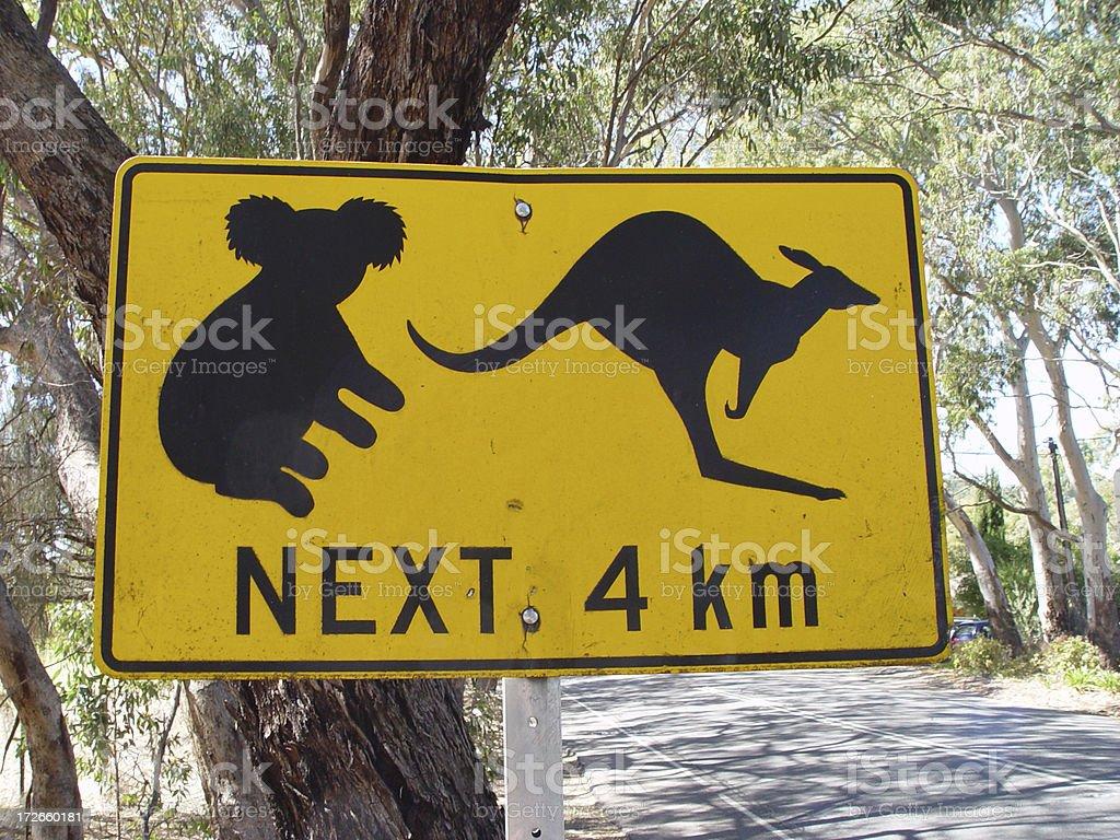 Koala and kangaroo sign royalty-free stock photo