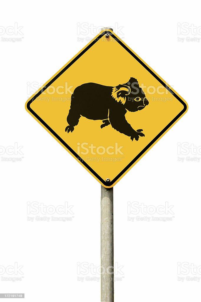Koala Crossing royalty-free stock photo