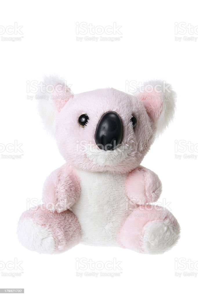 Koala Soft Toy royalty-free stock photo