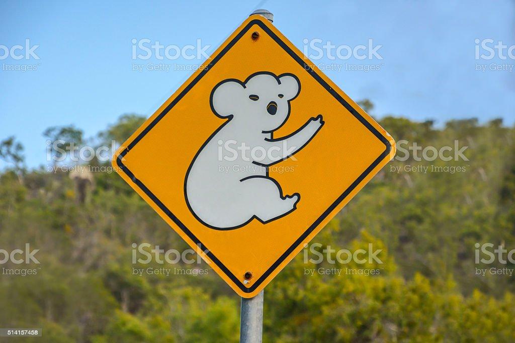Koala warning sign in Queensland, Australia stock photo