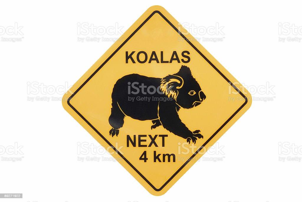 Koala warning sign stock photo