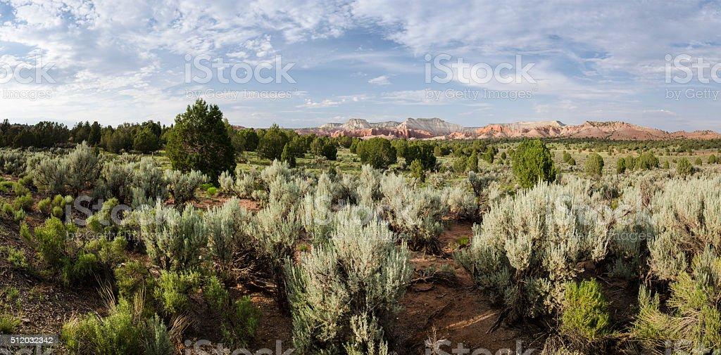 Kodachrome Basin Landscape stock photo