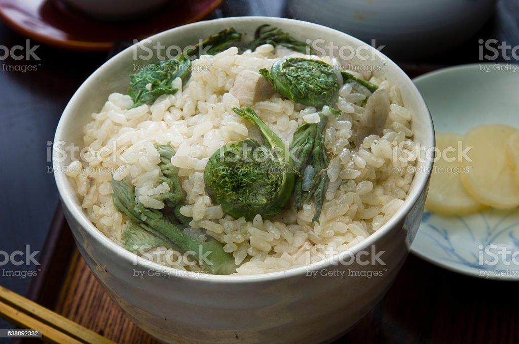 Kogomi rice Spring dish stock photo
