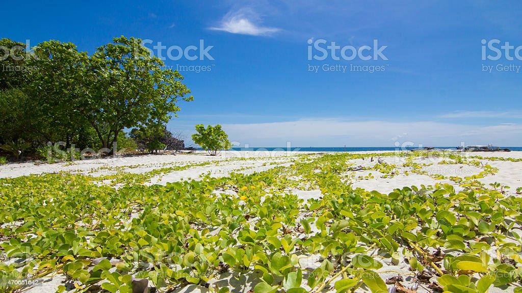 Koh Kai Island,Thailand royalty-free stock photo