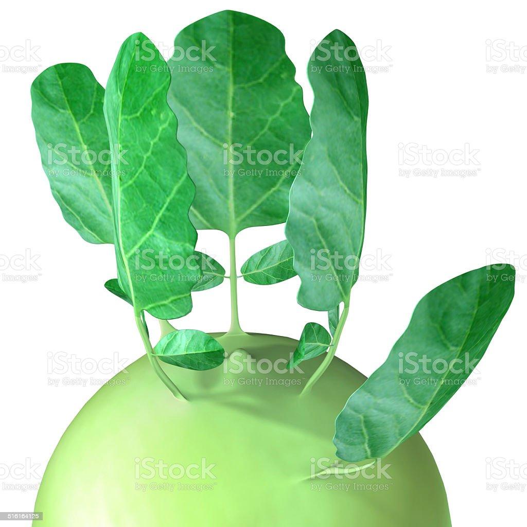 Kohlrabi (cabbage) stock photo