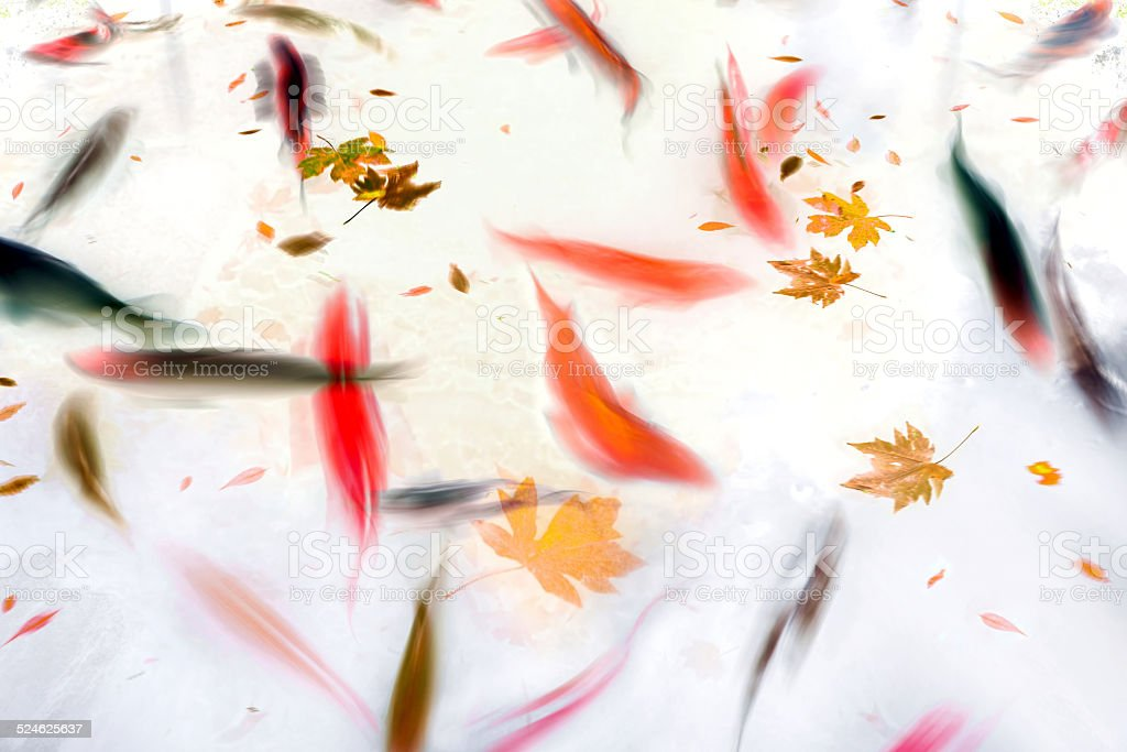 Koi Fish Swimming in Pond Abstract Illustration stock photo