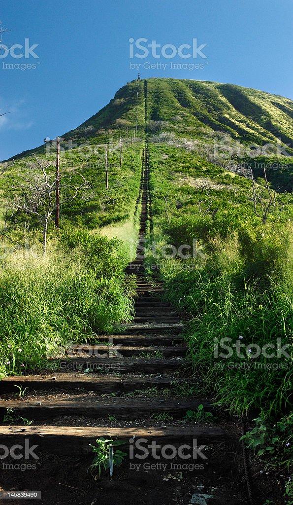 Koko Head hiking trail stock photo
