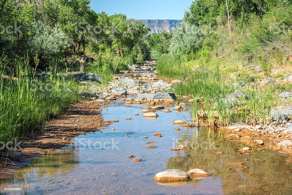Kolob Creek stock photo
