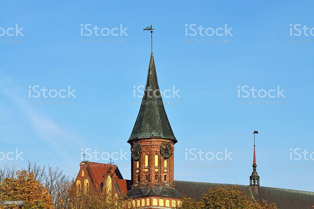 Konigsberg Cathedral. Kaliningrad. Russia stock photo