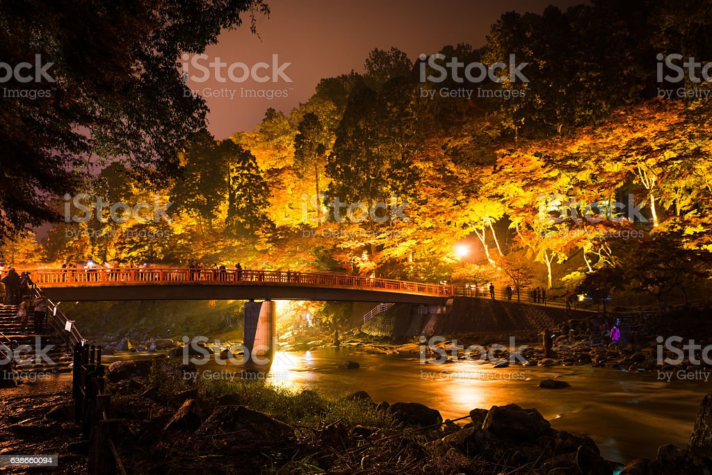 korankei in autumn with lighting show in aichi,japan stock photo
