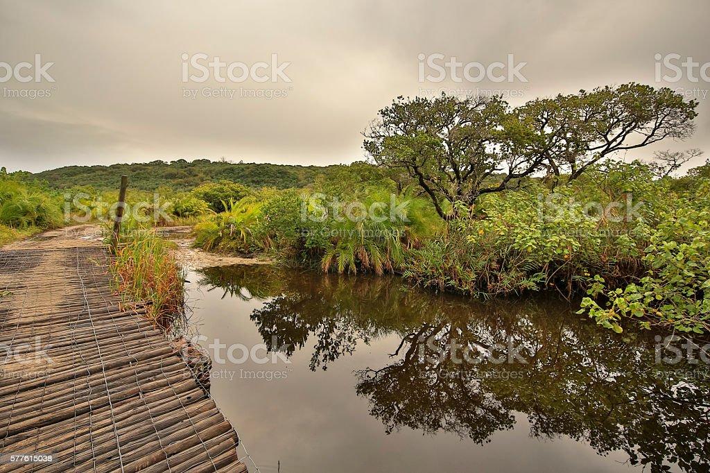 Kosi Bay Bridge stock photo