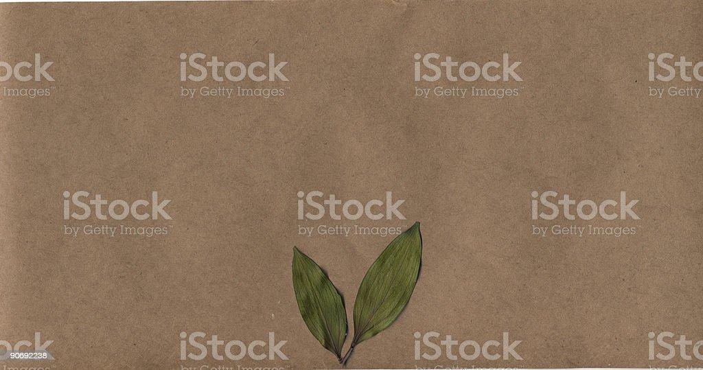 Krafty Leaves royalty-free stock photo