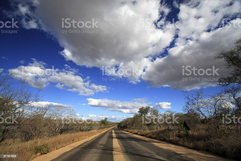 Kruger National Park in Mpumalanga, South Africa royalty-free stock photo