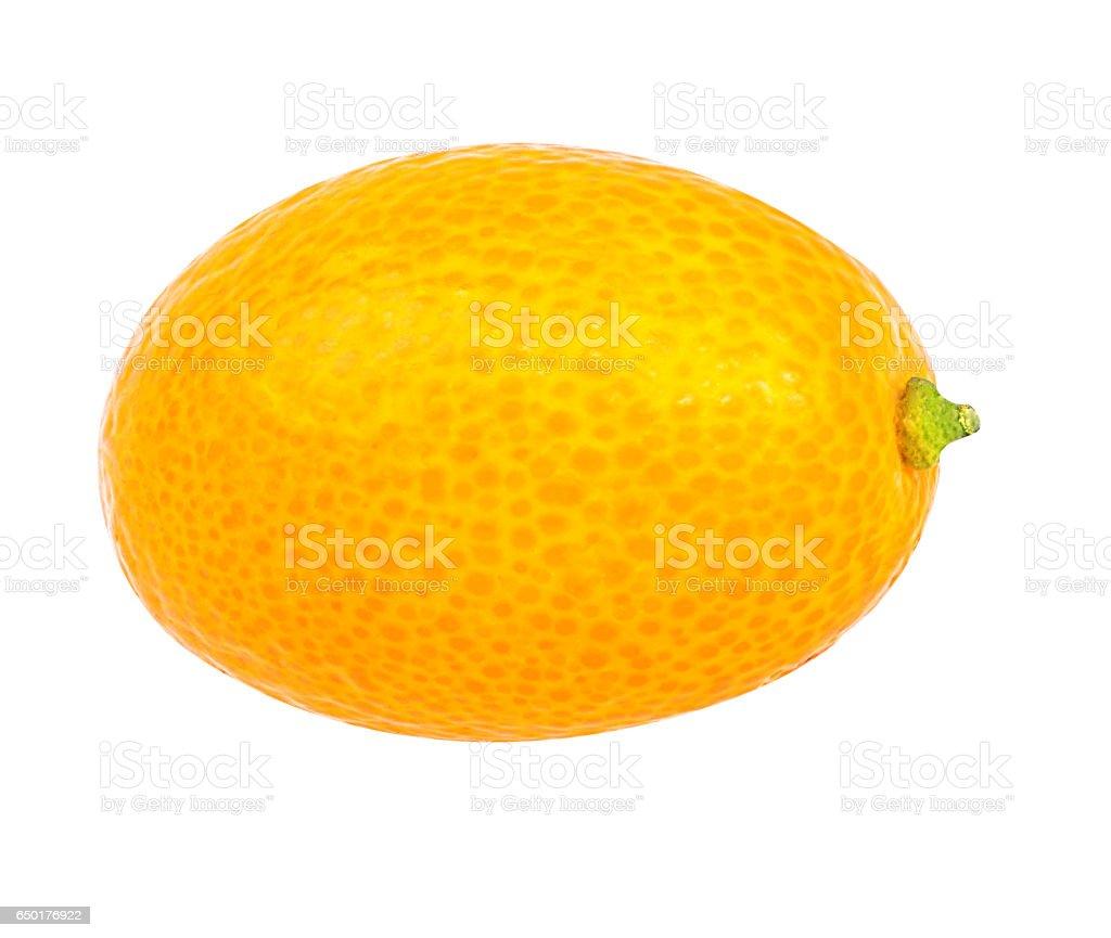 kumquat isolated on white stock photo