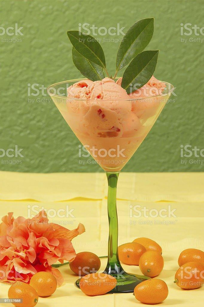 Kumquat Sorbet royalty-free stock photo