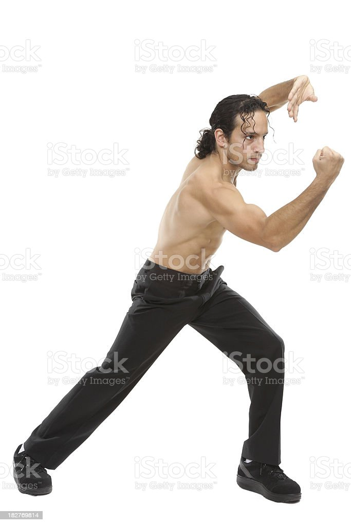 Kung Fu Fighter royalty-free stock photo