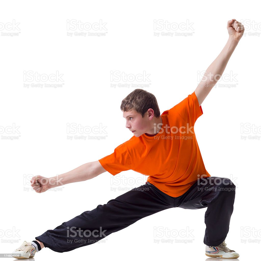 Kung Fu fighting position royalty-free stock photo