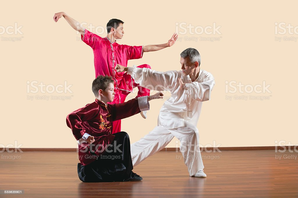 Kung Fu, Long Fist Style, people practicing martial arts stock photo