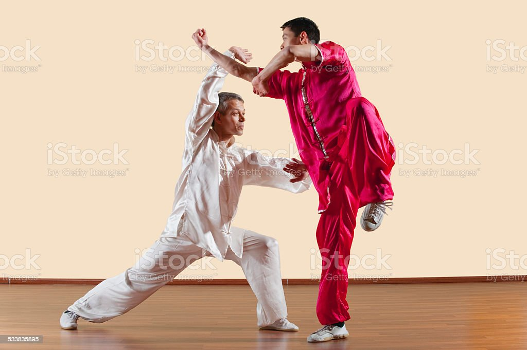 Kung Fu, Long Fist Style, Two men  doing kung-fu moves stock photo