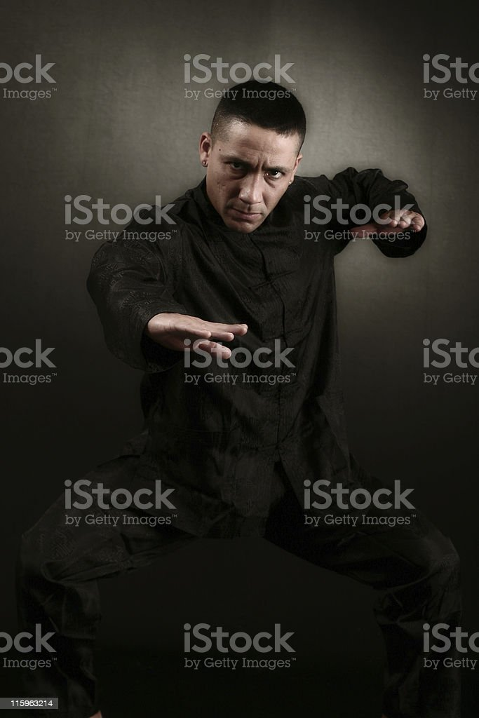 Kung Fu Stance royalty-free stock photo