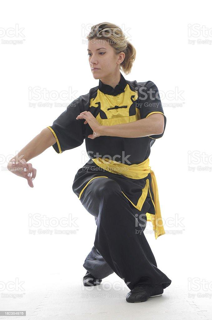 Kung fu tiger royalty-free stock photo