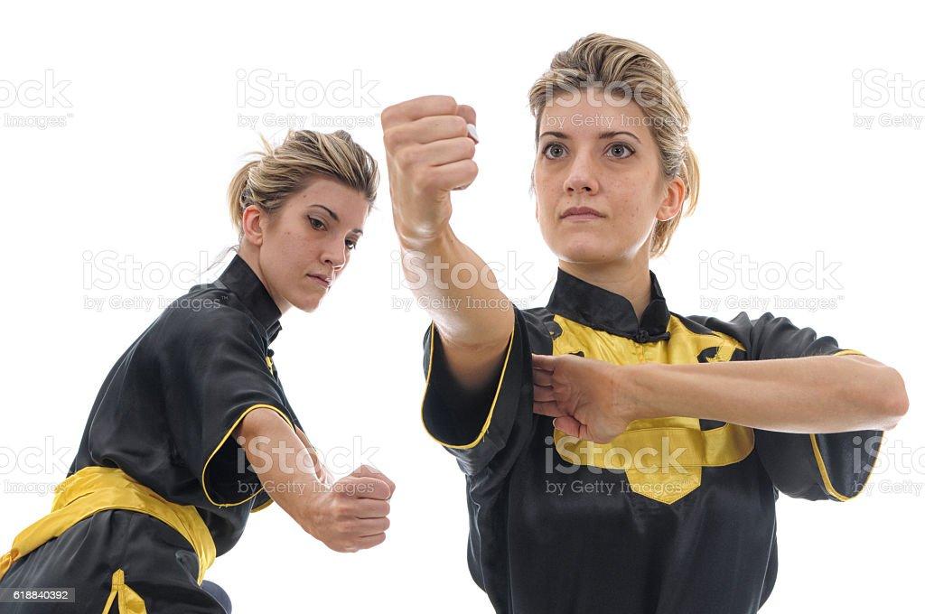 Kung-Fu Fist stock photo