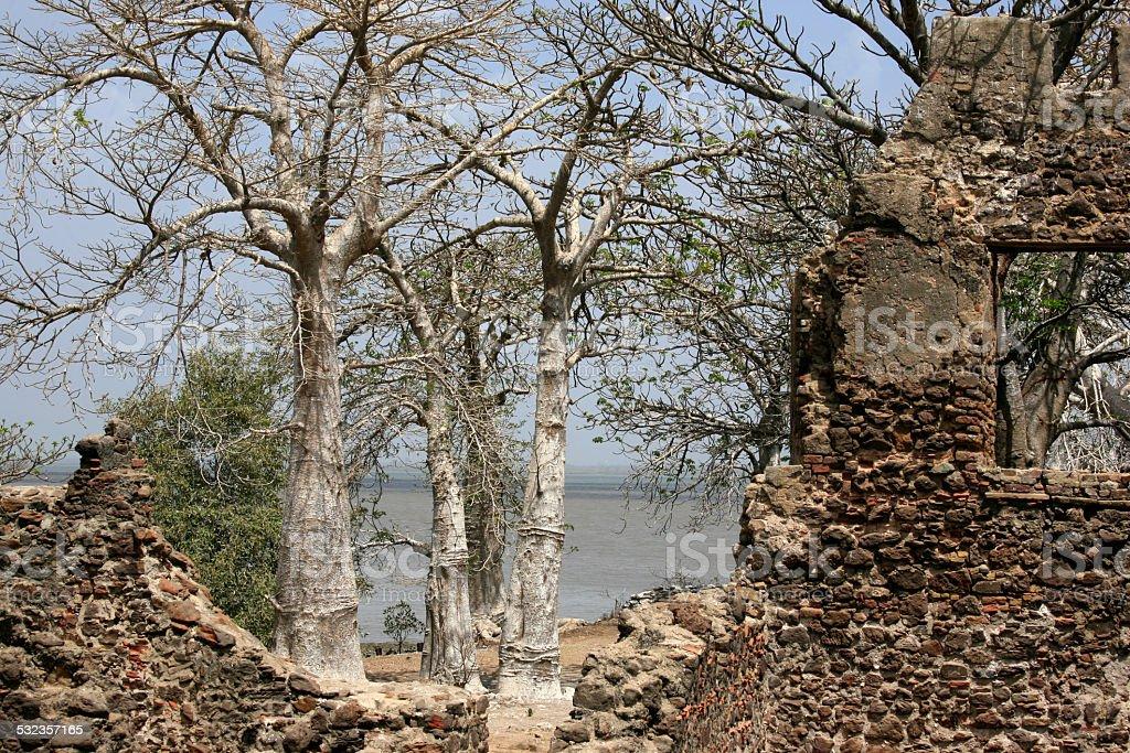 Kunta Kinteh Island, Gambia, West Africa stock photo
