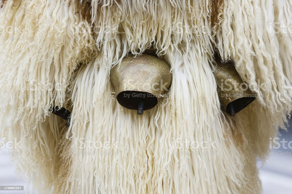 Kurent's cow bells and sheep's wool royalty-free stock photo