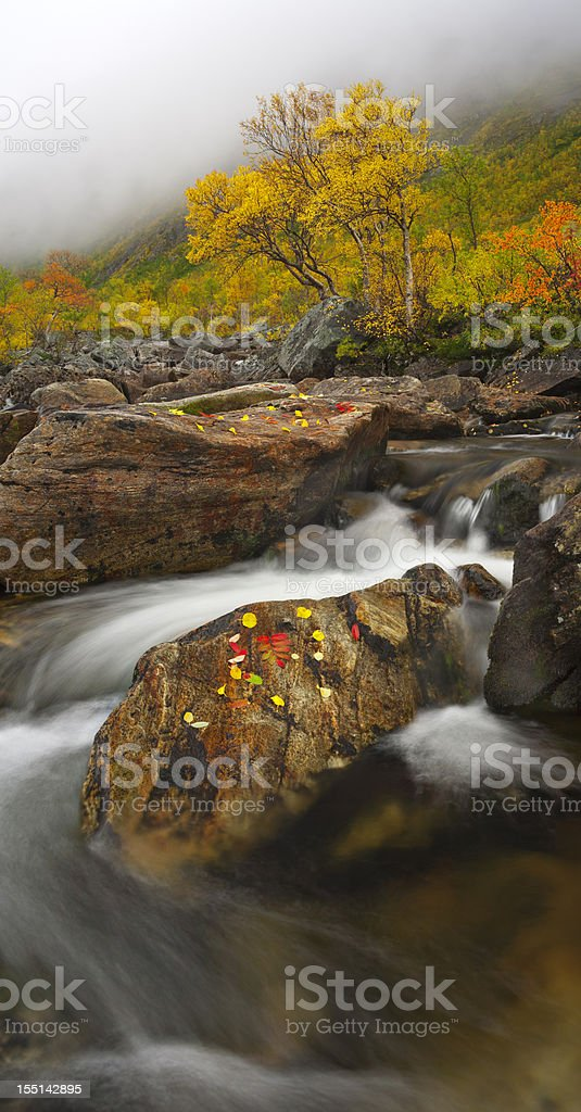 Kval?ya Fall colours stock photo