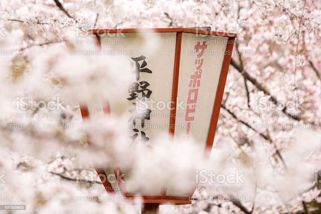 Kyoto City in Honshu, Japan stock photo